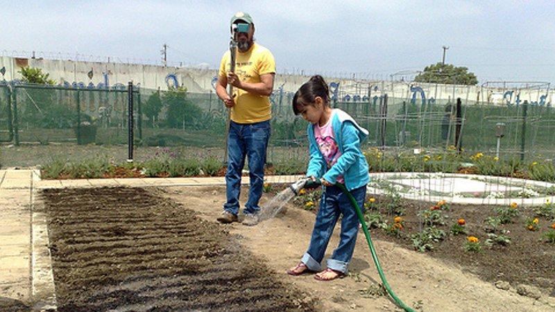 Girl watering garden_800x450.jpg